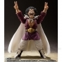 S.H. Figuarts Mr Satan Ltd